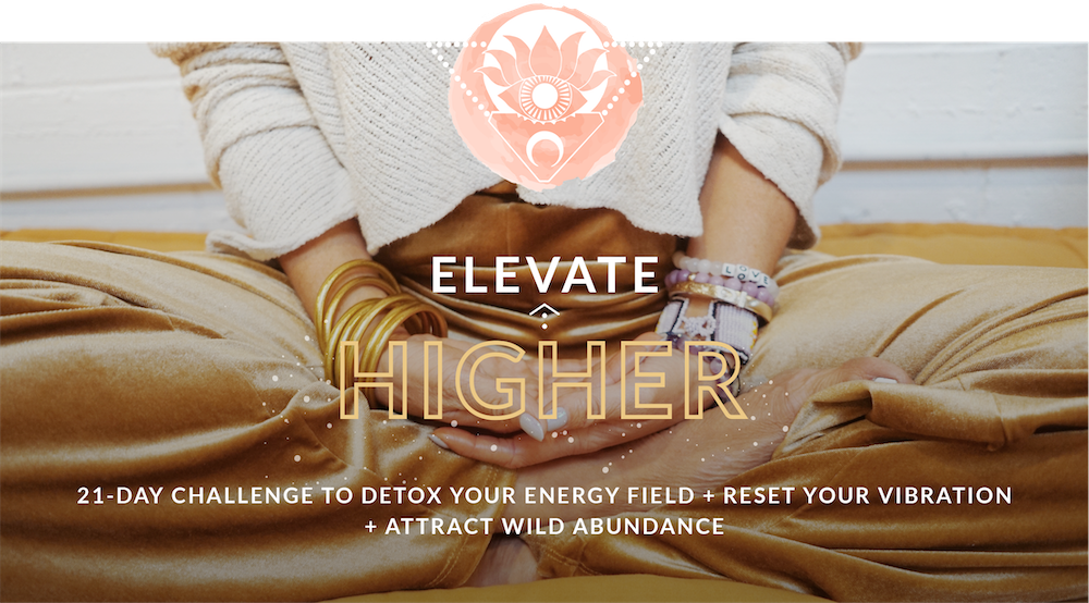 Elevate Higher - Elevate The Globe